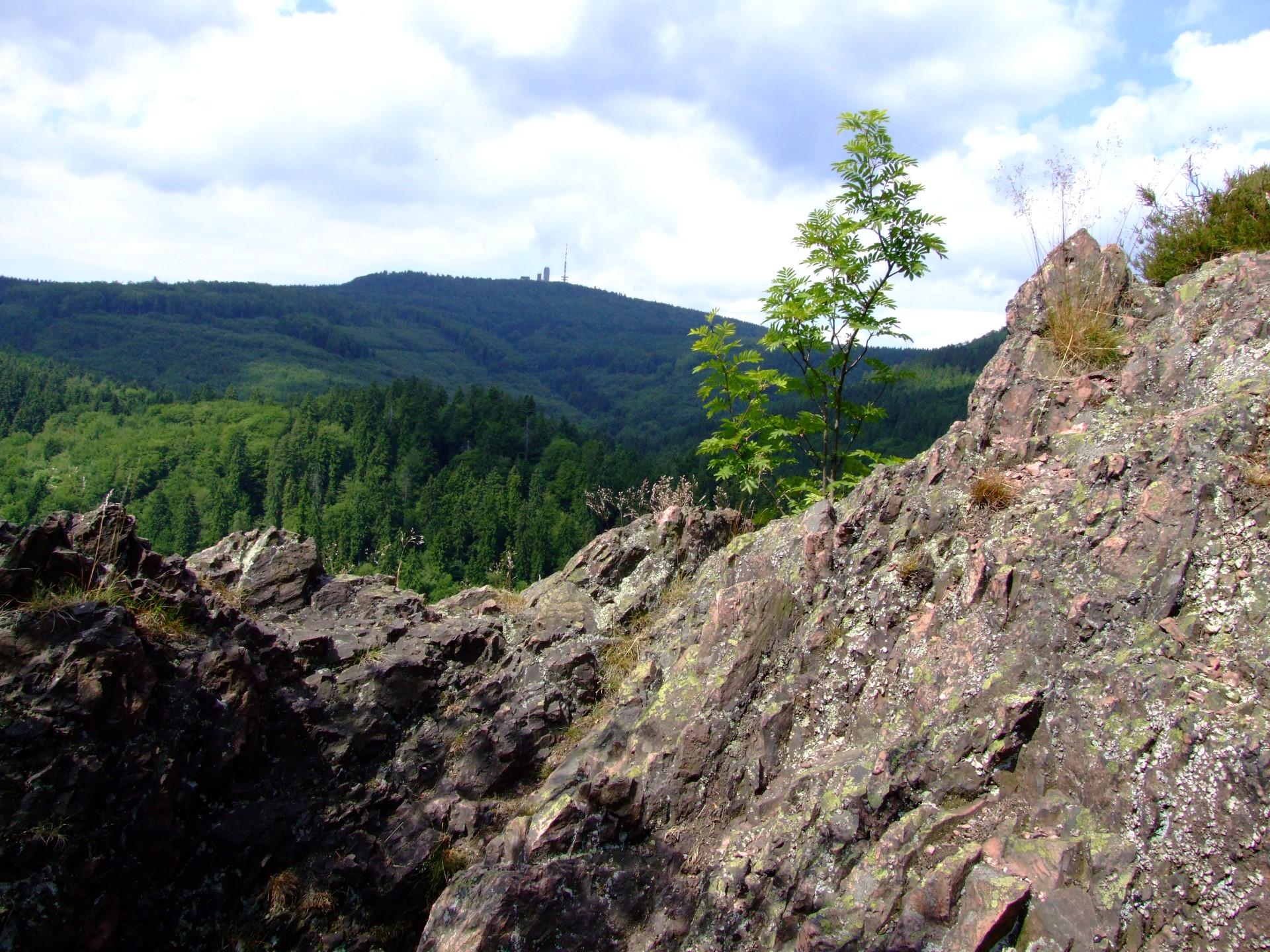 Auf dem Aschenbergstein