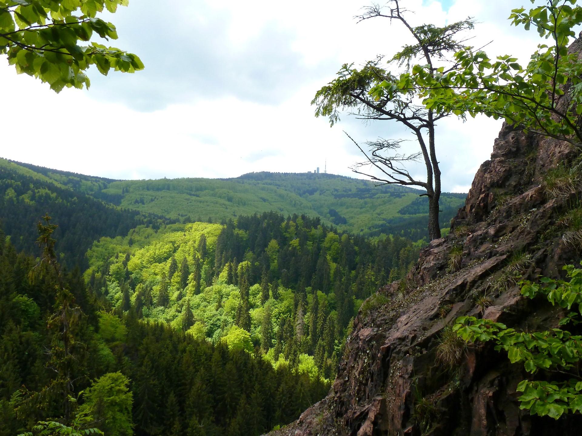 Blick vom Aschenbergstein in den Lauchagrund und zum Inselsberg